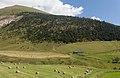 Vista dunha granxa baixando desde Coll de Ordino a Canillo. Andorra 310.jpg