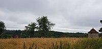 Vue sur la vallée et le pigeonnier.jpg