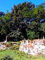 WIKIMEDIA GREEN PARK AT OLD FORTRESS IN TOWN OF BAR VINNYTSIA REGION STATE OF UKRAINE PHOTOGRAPH BY VIKTOR O LEDENYOV 18082014 (03).jpg