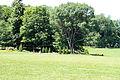 WPQc-164 Parc du Bois-de-Coulonge.JPG