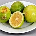 WRM FRUITS citrus 13-09-01-kochtreffen-wien-RalfR-02 crop scal.jpg