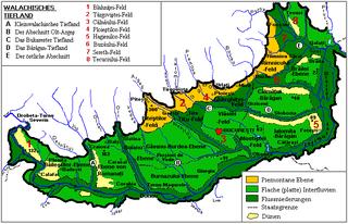 Wallachian Plain