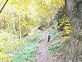 Waldweg bei der Buchenhoehle - geo.hlipp.de - 6530.jpg