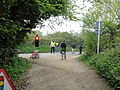 Walk the Wight 2010 at Brighstone Forest road crossing.jpg