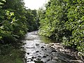 Water of Leith - geograph.org.uk - 936198.jpg