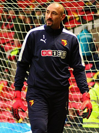 Heurelho Gomes - Gomes at Watford in 2015