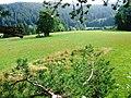 Wernberg Terlach Viereckschanze 04082007 01.jpg