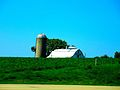White Barn with a Silo - panoramio.jpg