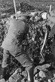 Wilhelm Walther, Dienst im Wald 1, 2-065-066-5882.tif