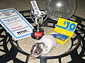 Winning hamster Petco Hamster Derby.jpg