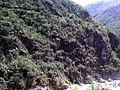Yanango, Peru - panoramio.jpg