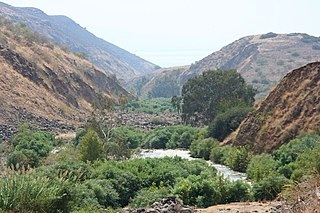 Jordan Rift Valley Geographic region in the Levant