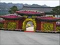 Yeongam Wangin Chrysanthemum Festival (4459422688).jpg