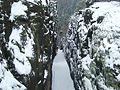 Zittauer Gebirge - durch diese hohle Gasse muß man gehen... - panoramio.jpg