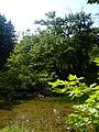 Zugdidi botanical garden11.jpg