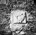 """Grk"" (grb)- ""akula"" (aquila); vzidan najprej v starem zidu, Neblo 1953.jpg"