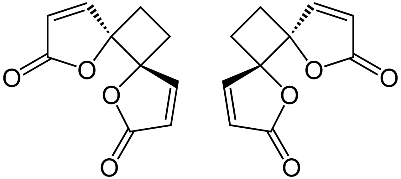 Filerr And Ss Anemonin Structural Formulae
