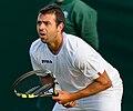 Íñigo Cervantes 1, 2015 Wimbledon Qualifying - Diliff.jpg