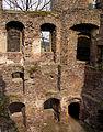 Świny zamek (21) Świny zamek. Foto Barbara Maliszewska.JPG