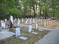 Братская могила № 4.JPG