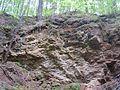 Вид из Теплой пещеры.jpg