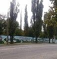 Графіті на паркані Запорізької дитячої залізниці (Wladoff, 2016).jpg