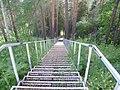 Лестница к базе, начало июля 2011 - panoramio.jpg