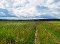 Национальный парк «Мещёрский».jpg