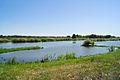 Озеро Веловощ.jpg