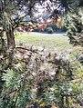 Парк Косенко, игра света, осень.jpg
