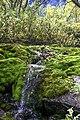 Ручей на склонах Тахтарвумчорра 2.jpg