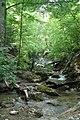У водопада - panoramio.jpg