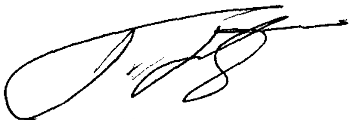Thaksin Shinawatra's signature