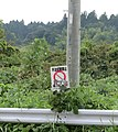 ごみが困り顔 - panoramio.jpg