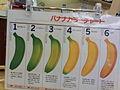 バナナカラーチャート (193490914).jpg
