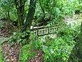 大屯瀑步上游的水管橋.jpg