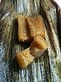 灰汁巻とは竹の皮で包んだもち米を灰汁汁 (5683201172).jpg