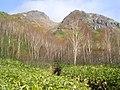 焼岳山頂を望む - panoramio (1).jpg