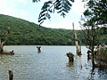 蘭嶼 天池 - panoramio.jpg