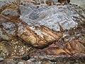 馬屎州岩6.jpg
