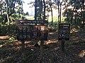제5호근린공원1.jpg