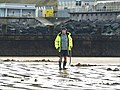 -2021-01-11 Treasure hunter with a metal detector, Sheringham Beach, Norfolk.JPG