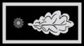 03 01 Subcomisario.png
