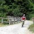 12 Downhill.jpg