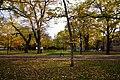131103 Hokkaido University Sapporo Hokkaido Japan07s3.jpg