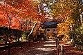 131130 Komyoji Nagaokakyo Kyoto pref Japan02s3.jpg