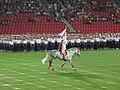 15. sokolský slet na stadionu Eden v roce 2012 (2).JPG