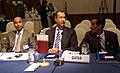 158ava Reunión de países miembros de la OPEP (5251365307).jpg