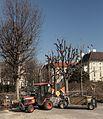 17-02-15-Wien-Volksgarten-RalfR-RR2 7859.jpg