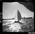 18-footer JENNY TOO on Sydney Harbour (8777553542).jpg